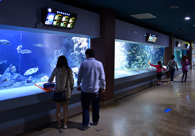 Inside the Otaru Aquarium