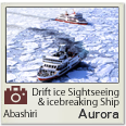 Drift Ice Sightseeng & Icebraker Ship Aurora