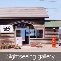 Sightseeing Gallery